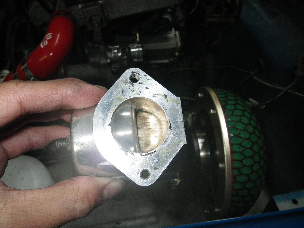 Imgp5544
